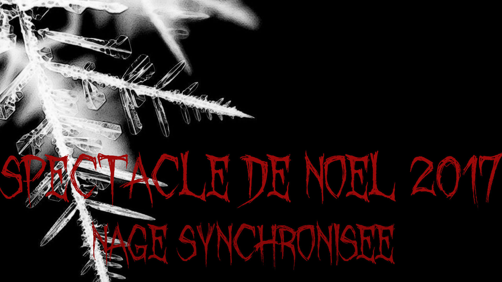Spectacle de Noel Nage Synchro le 16 DEC